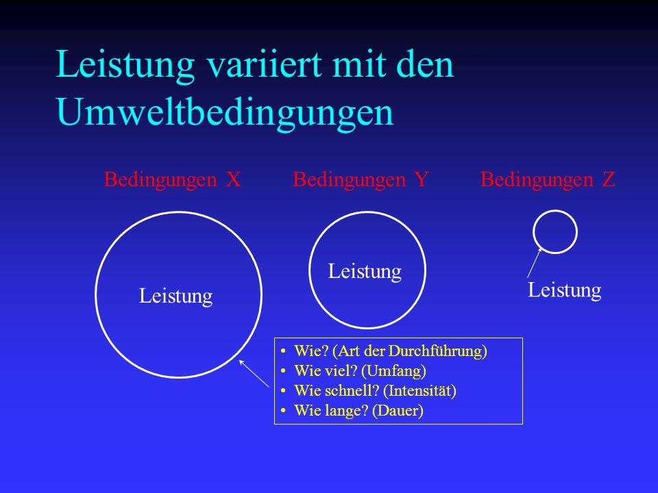 Leistung variiert mit den Umweltbedingungen Bedingungen XBedingungen YBedingungen Z Leistung Wie? (Art der Durchführung) Wie viel? (Umfang) Wie schnel