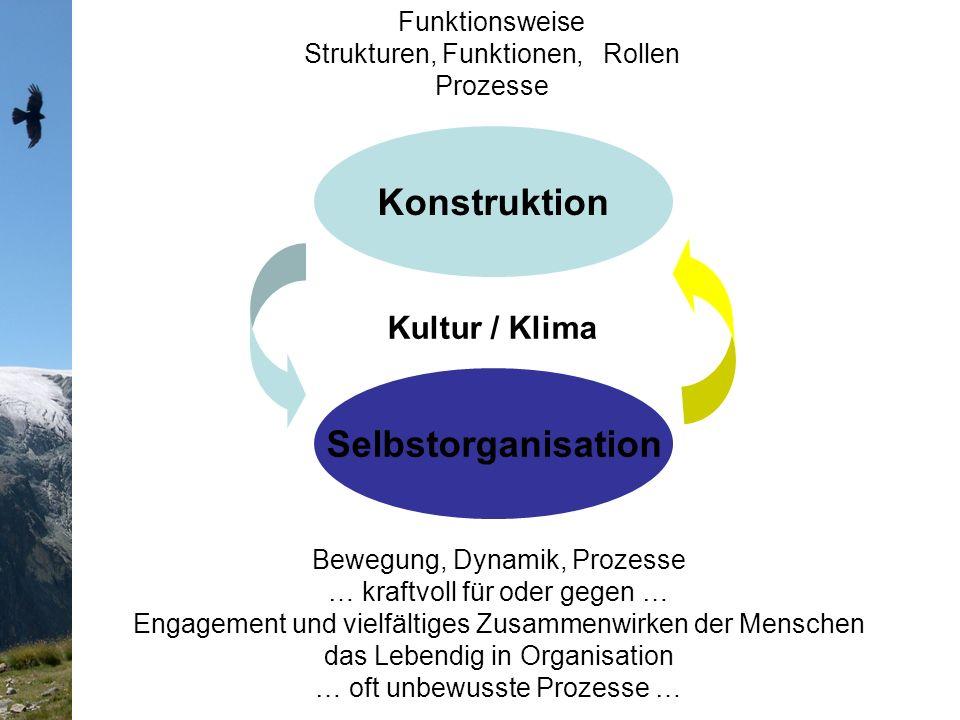 Selbstorganisation Konstruktion Kultur / Klima Funktionsweise Strukturen, Funktionen, Rollen Prozesse Bewegung, Dynamik, Prozesse … kraftvoll für oder gegen … Engagement und vielfältiges Zusammenwirken der Menschen das Lebendig in Organisation … oft unbewusste Prozesse …
