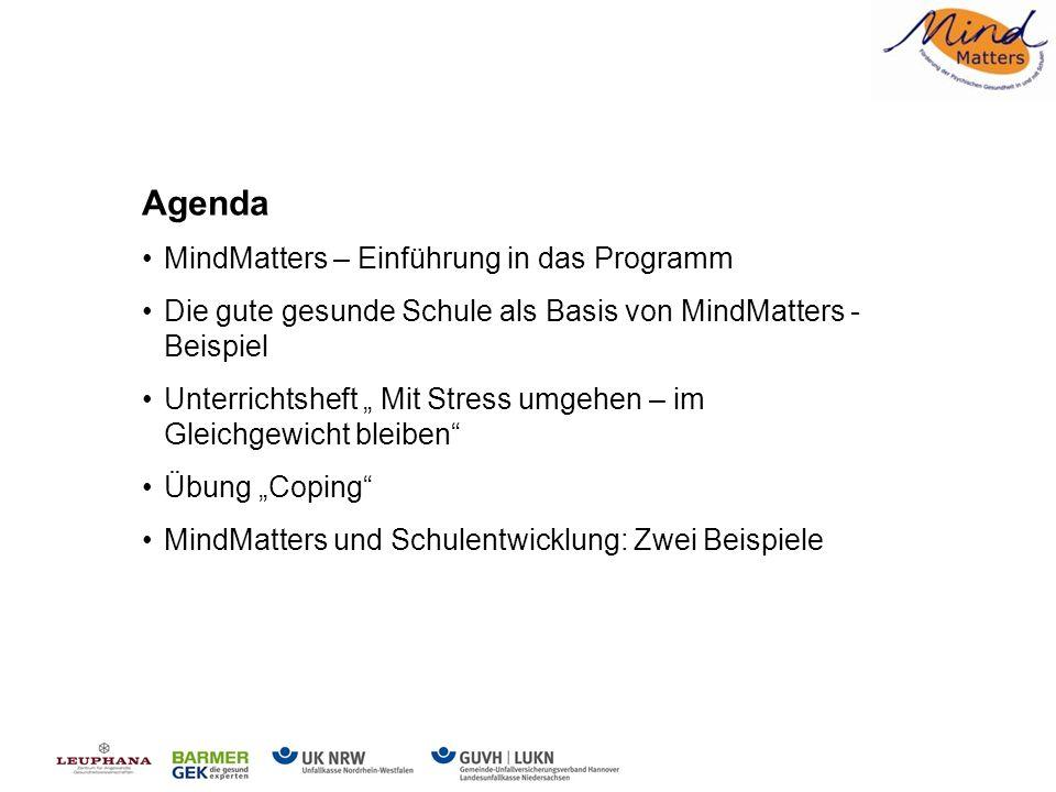 2 Hintergrund Hintergrund von MindMatters MindMatters ist ein praxiserprobtes und wissenschaftlich fundiertes Programm.