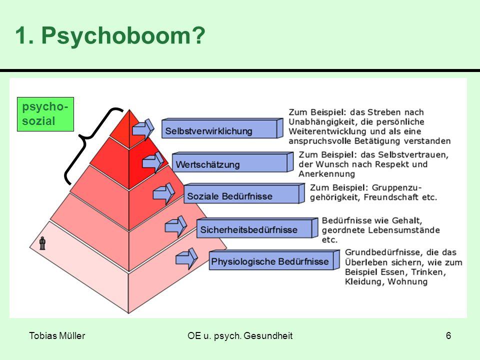 Tobias MüllerOE u. psych. Gesundheit6 1. Psychoboom? psycho- sozial