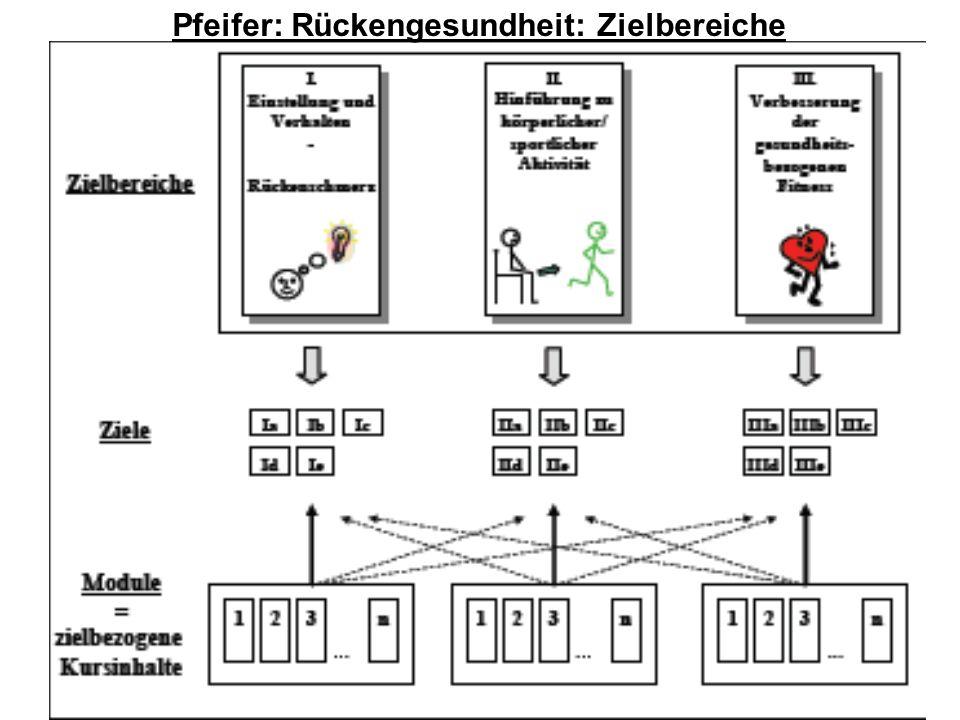 Das Neue an der neuen Rückenschule Seite 21 19. April 2014Rückenschule Refresher Nicole Kuttner Pfeifer: Rückengesundheit: Zielbereiche