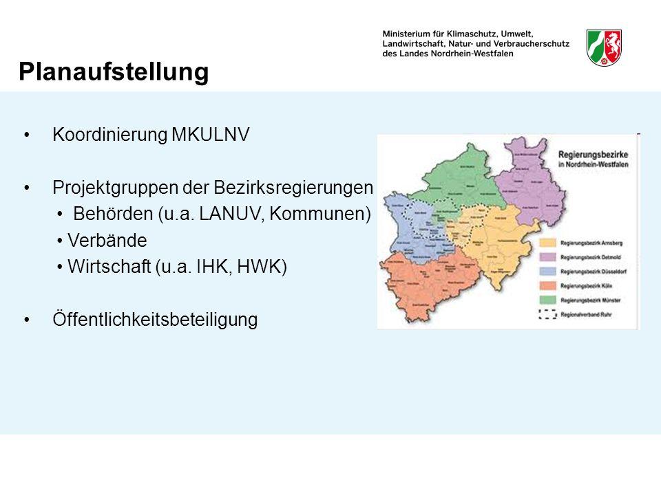 Planaufstellung Koordinierung MKULNV Projektgruppen der Bezirksregierungen Behörden (u.a. LANUV, Kommunen) Verbände Wirtschaft (u.a. IHK, HWK) Öffentl