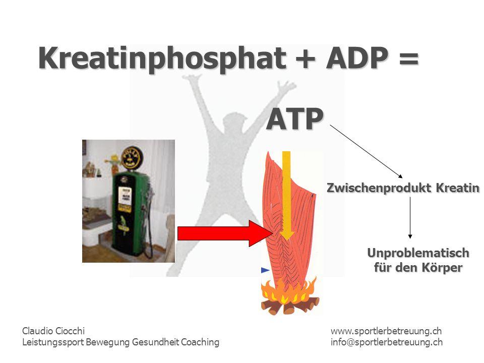 Claudio Ciocchi Leistungssport Bewegung Gesundheit Coaching www.sportlerbetreuung.ch info@sportlerbetreuung.ch Kreatinphosphat + ADP = Zwischenprodukt