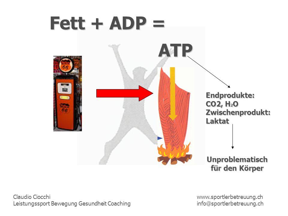 Claudio Ciocchi Leistungssport Bewegung Gesundheit Coaching www.sportlerbetreuung.ch info@sportlerbetreuung.ch Fett + ADP = ATP Unproblematisch für de