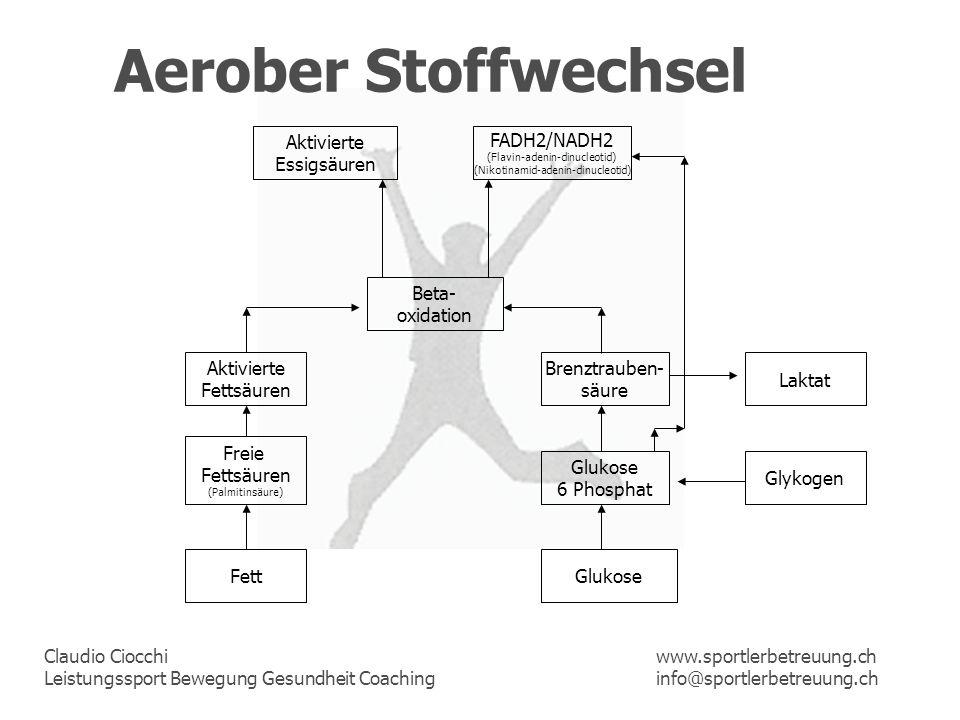 Claudio Ciocchi Leistungssport Bewegung Gesundheit Coaching www.sportlerbetreuung.ch info@sportlerbetreuung.ch Aerober Stoffwechsel Fett Freie Fettsäu