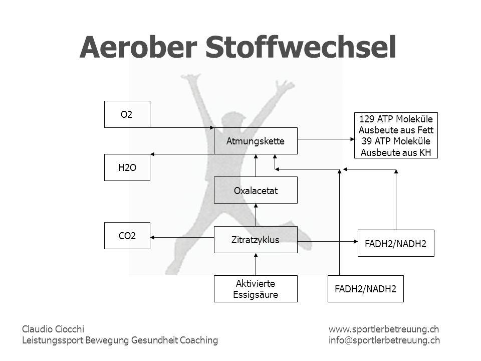 Claudio Ciocchi Leistungssport Bewegung Gesundheit Coaching www.sportlerbetreuung.ch info@sportlerbetreuung.ch Aerober Stoffwechsel Aktivierte Essigsä