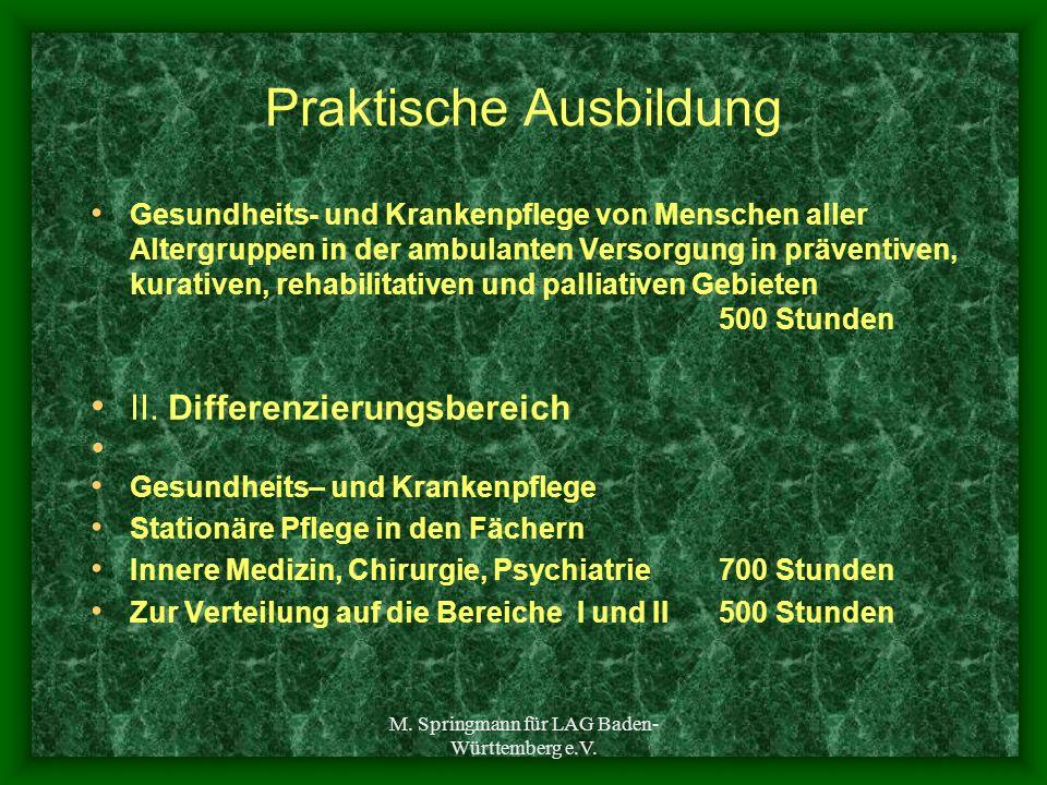M. Springmann für LAG Baden- Württemberg e.V. Praktische Ausbildung Gesundheits- und Krankenpflege von Menschen aller Altergruppen in der ambulanten V