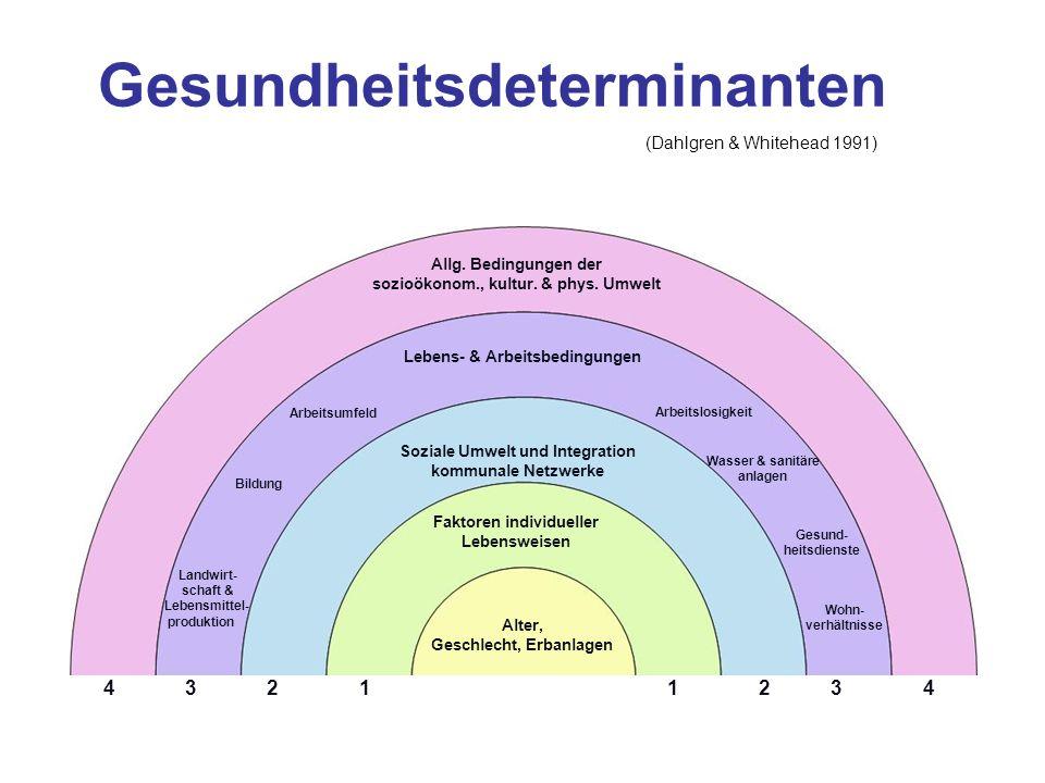 Gesundheitsdeterminanten Allg. Bedingungen der sozioökonom., kultur. & phys. Umwelt Lebens- & Arbeitsbedingungen Soziale Umwelt und Integration kommun