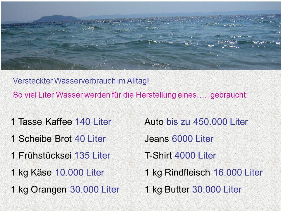 Versteckter Wasserverbrauch im Alltag! So viel Liter Wasser werden für die Herstellung eines….. gebraucht: Auto bis zu 450.000 Liter Jeans 6000 Liter