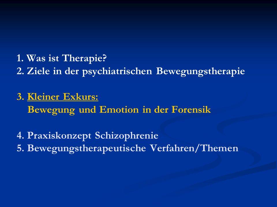 1. Was ist Therapie? 2. Ziele in der psychiatrischen Bewegungstherapie 3. Kleiner Exkurs: Bewegung und Emotion in der Forensik 4. Praxiskonzept Schizo