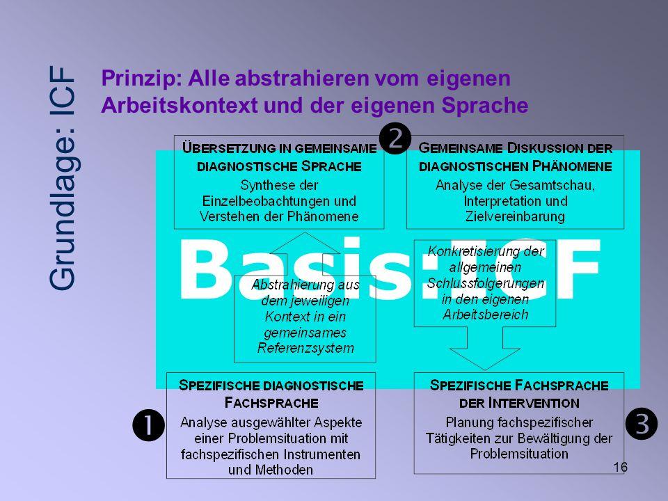 16 Basis:ICF Prinzip: Alle abstrahieren vom eigenen Arbeitskontext und der eigenen Sprache Grundlage: ICF