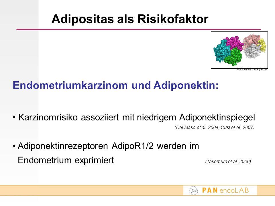 Adipositas als Risikofaktor Endometriumkarzinom und Adiponektin: Karzinomrisiko assoziiert mit niedrigem Adiponektinspiegel (Dal Maso et al. 2004, Cus