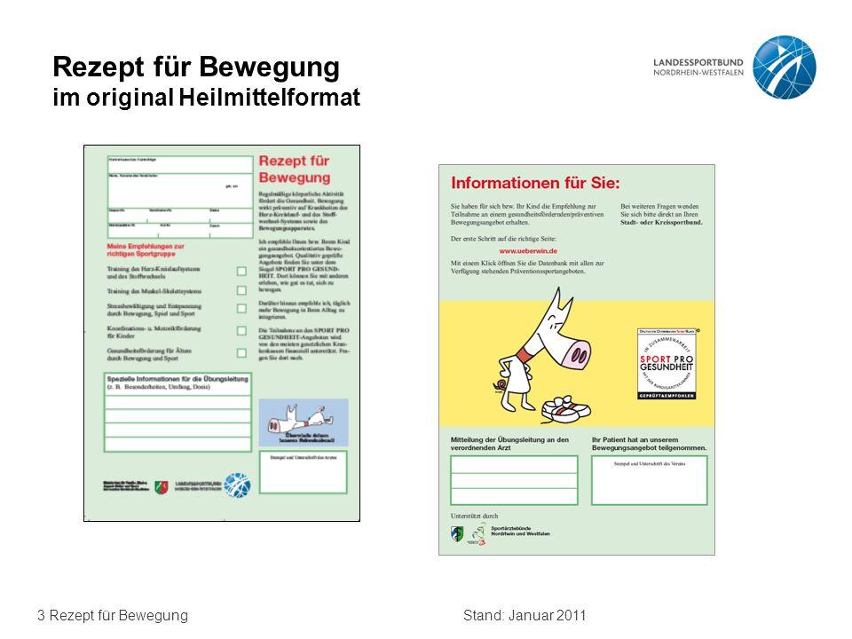 3 Rezept für BewegungStand: Januar 2011 Rezept für Bewegung im original Heilmittelformat