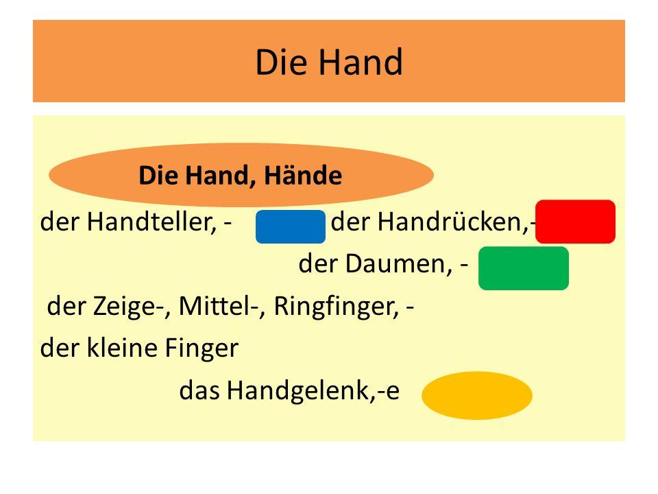 Die Hand der Handteller, - dlaň der Handrücken,- hřbet der Daumen, - palec der Zeige-, Mittel-, Ringfinger, - der kleine Finger das Handgelenk,-e zápě