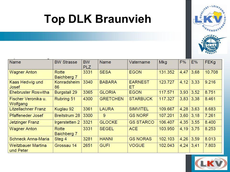Top DLK Braunvieh