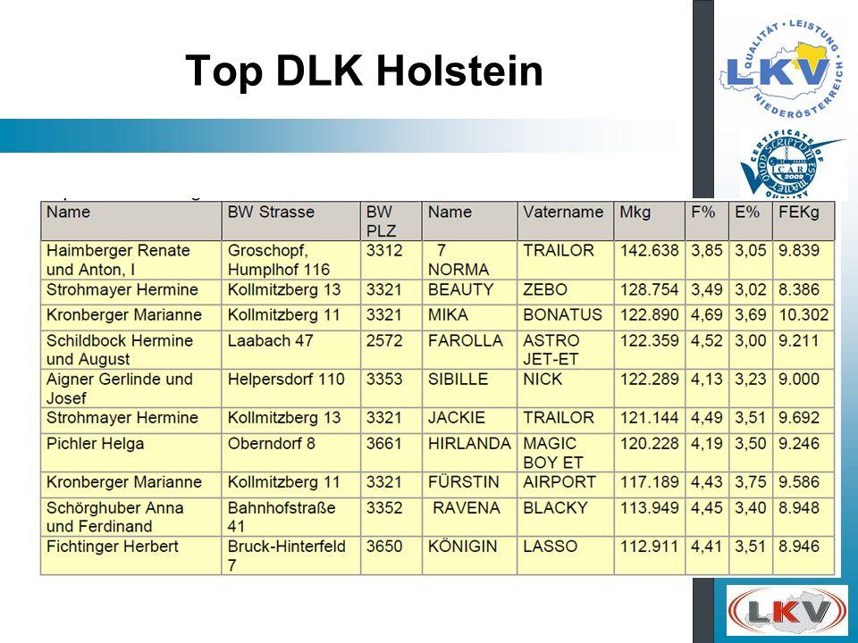 Top DLK Holstein