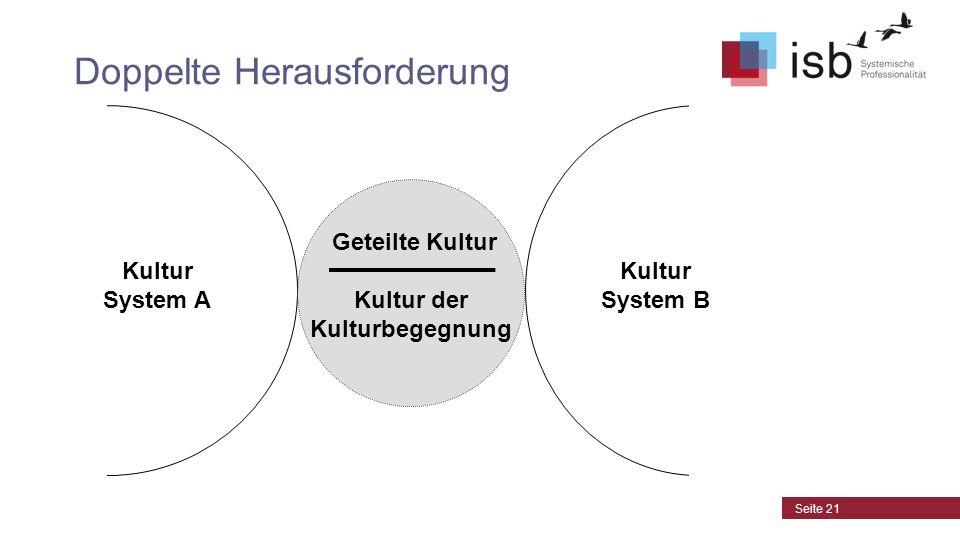 CC-by-Lizenz, Autor: Bernd Schmid für isb-w.euisb-w.eu Systemische Professionalität 2013 Doppelte Herausforderung Geteilte Kultur Kultur der Kulturbeg