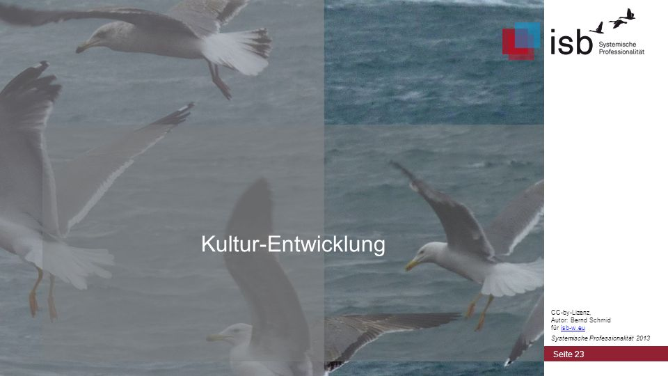 CC-by-Lizenz, Autor: Bernd Schmid für isb-w.euisb-w.eu Systemische Professionalität 2013 Kultur-Entwicklung Seite 23