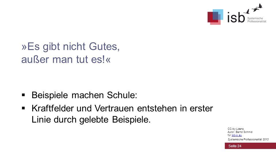 CC-by-Lizenz, Autor: Bernd Schmid für isb-w.euisb-w.eu Systemische Professionalität 2013 »Es gibt nicht Gutes, außer man tut es!« Beispiele machen Sch
