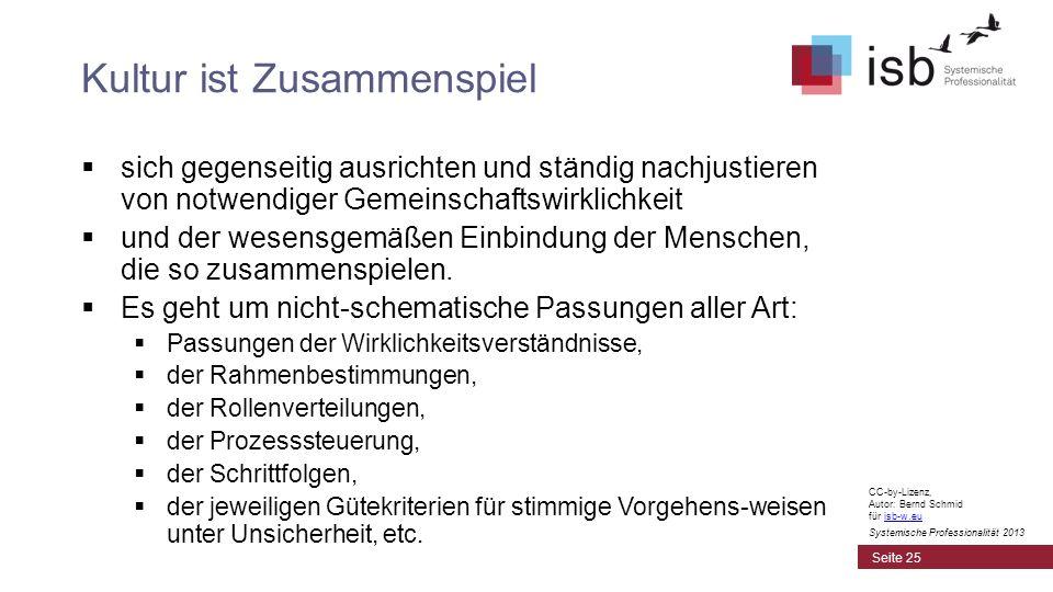 CC-by-Lizenz, Autor: Bernd Schmid für isb-w.euisb-w.eu Systemische Professionalität 2013 Kultur ist Zusammenspiel sich gegenseitig ausrichten und stän