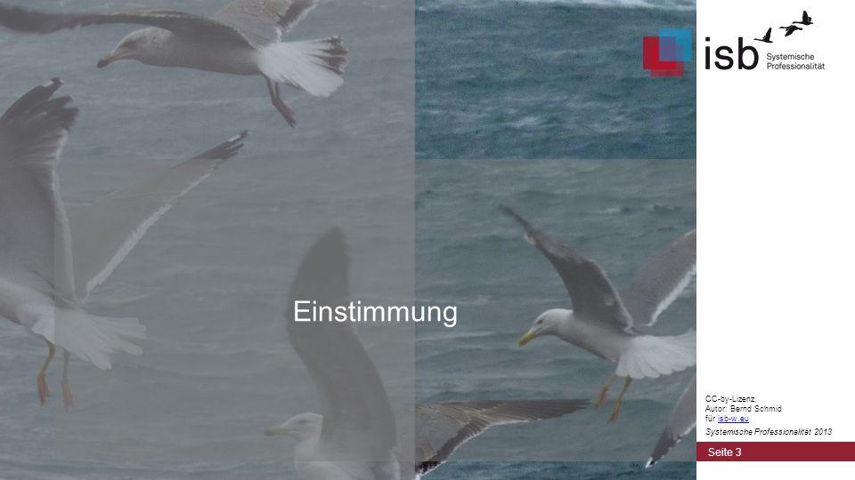 CC-by-Lizenz, Autor: Bernd Schmid für isb-w.euisb-w.eu Systemische Professionalität 2013 Einstimmung Seite 3