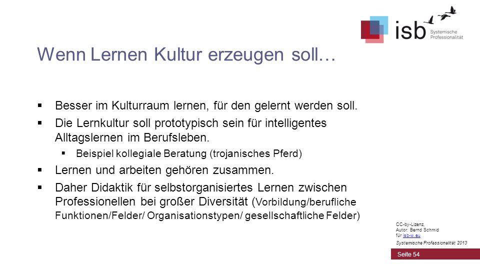 CC-by-Lizenz, Autor: Bernd Schmid für isb-w.euisb-w.eu Systemische Professionalität 2013 Wenn Lernen Kultur erzeugen soll… Besser im Kulturraum lernen