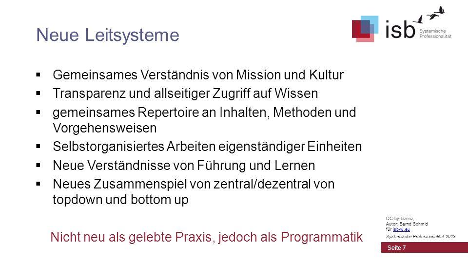 CC-by-Lizenz, Autor: Bernd Schmid für isb-w.euisb-w.eu Systemische Professionalität 2013 Gemeinsames Verständnis von Mission und Kultur Transparenz un
