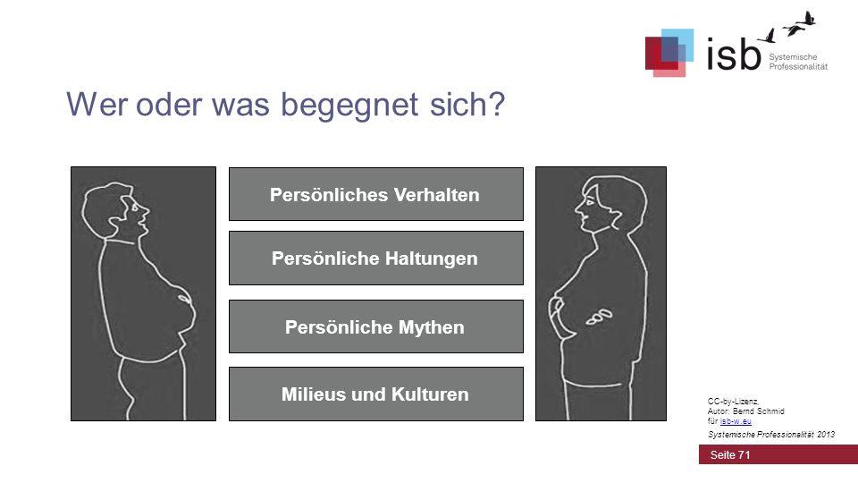 CC-by-Lizenz, Autor: Bernd Schmid für isb-w.euisb-w.eu Systemische Professionalität 2013 Wer oder was begegnet sich? Persönliches Verhalten Persönlich