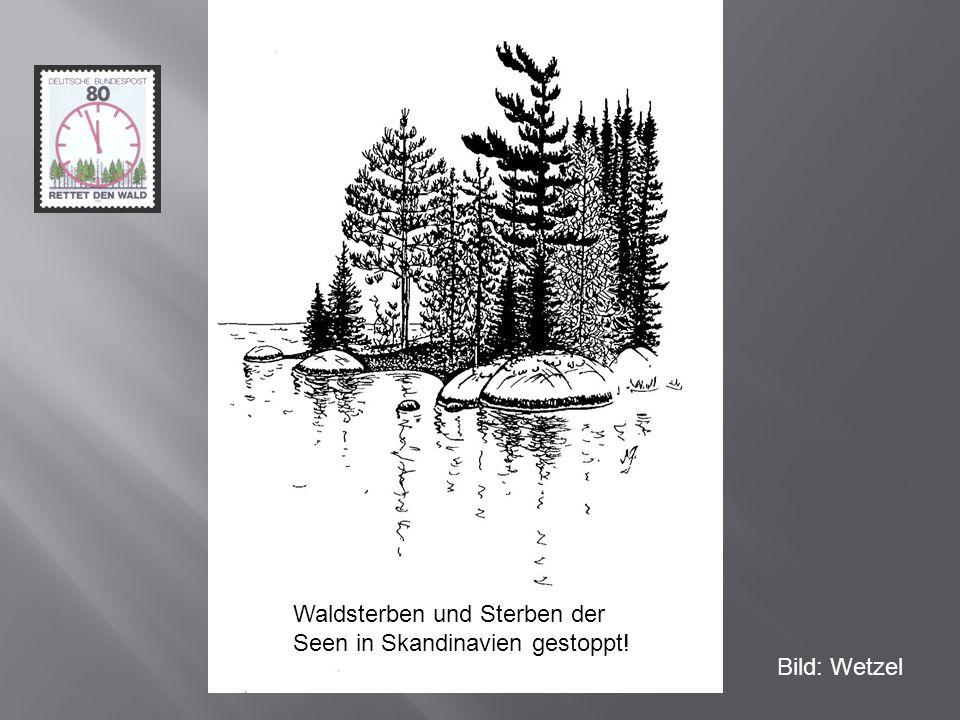 Bild: Wetzel Waldsterben und Sterben der Seen in Skandinavien gestoppt!