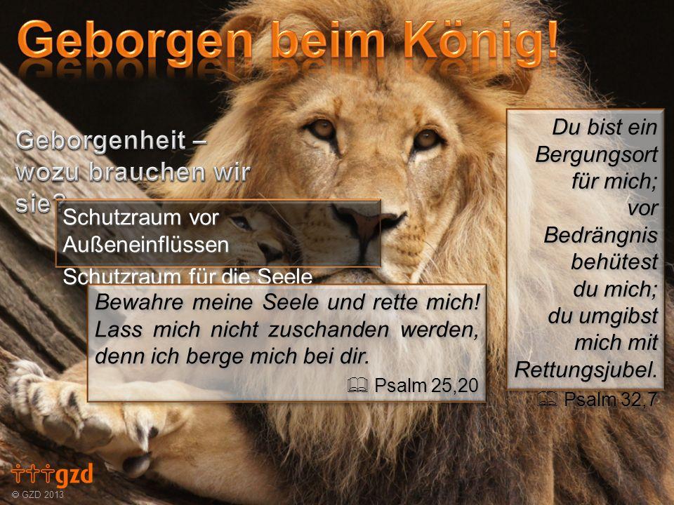 GZD 2013 Du bist ein Bergungsort für mich; vor Bedrängnis behütest du mich; du umgibst mich mit Rettungsjubel. Psalm 32,7 Psalm 32,7 Du bist ein Bergu