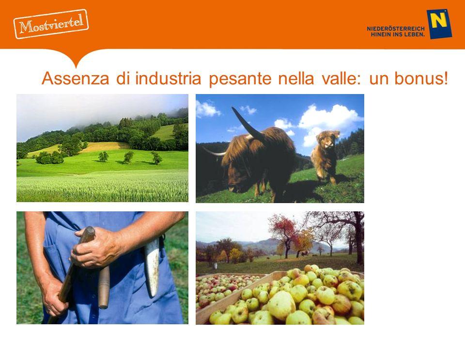 Assenza di industria pesante nella valle: un bonus!