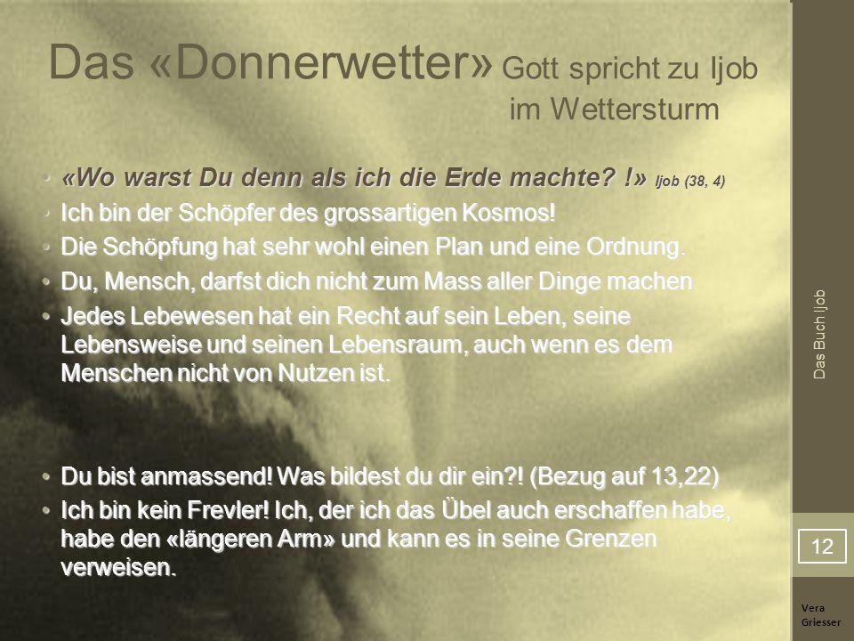 Vera Griesser Das Buch Ijob Das «Donnerwetter» Gott spricht zu Ijob im Wettersturm «Wo warst Du denn als ich die Erde machte? !» Ijob (38, 4)«Wo warst