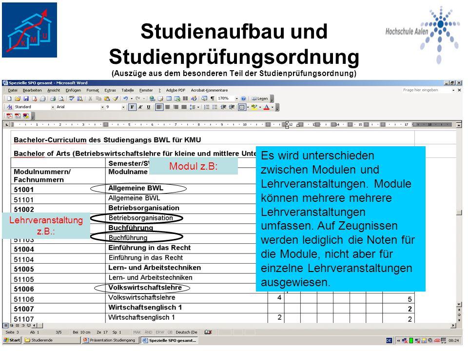 Studienaufbau und Studienprüfungsordnung (Auszüge aus dem besonderen Teil der Studienprüfungsordnung) Es wird unterschieden zwischen Modulen und Lehrv
