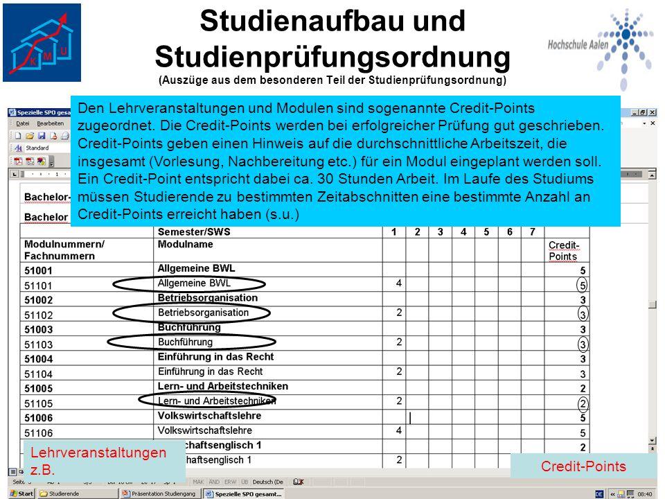 Studienaufbau und Studienprüfungsordnung (Auszüge aus dem besonderen Teil der Studienprüfungsordnung) Lehrveranstaltungen z.B. Den Lehrveranstaltungen