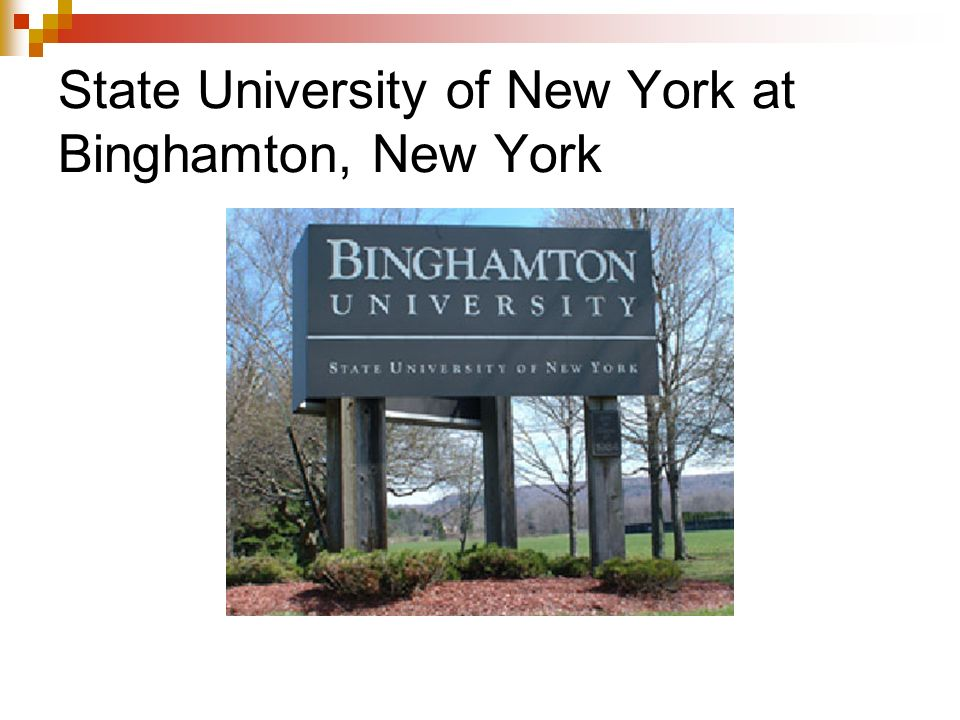 State University of New York at Binghamton, New York