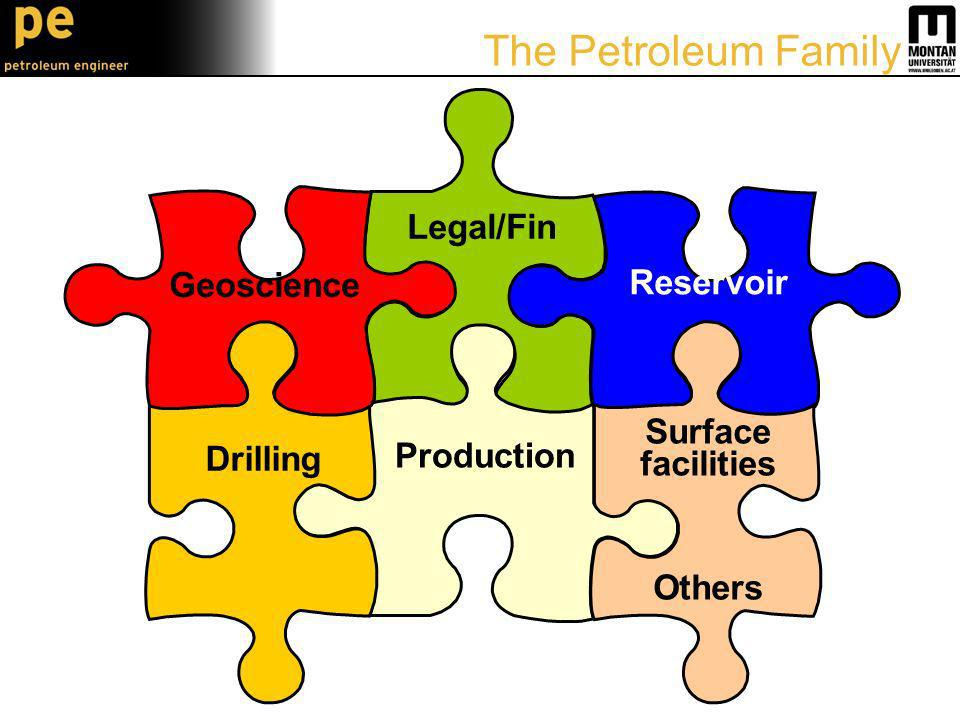 Legal/Fin Production Drilling Geoscience Reservoir Surface facilities Others The Petroleum Family