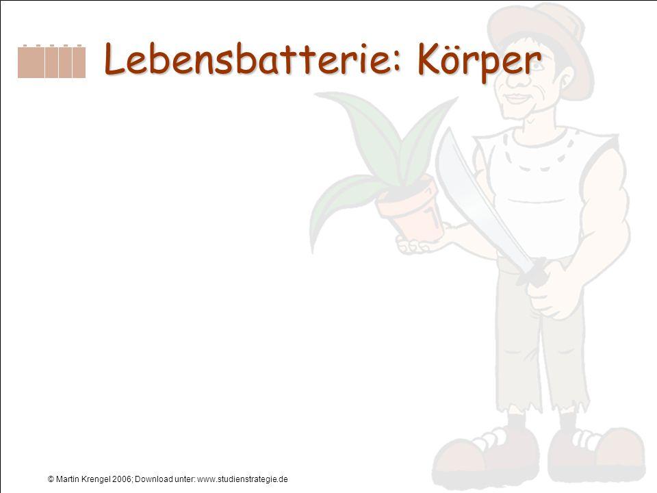 © Martin Krengel 2006; Download unter: www.studienstrategie.de Lebensbatterie: Körper