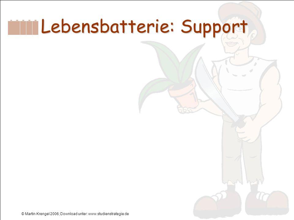 © Martin Krengel 2006; Download unter: www.studienstrategie.de Lebensbatterie: Support
