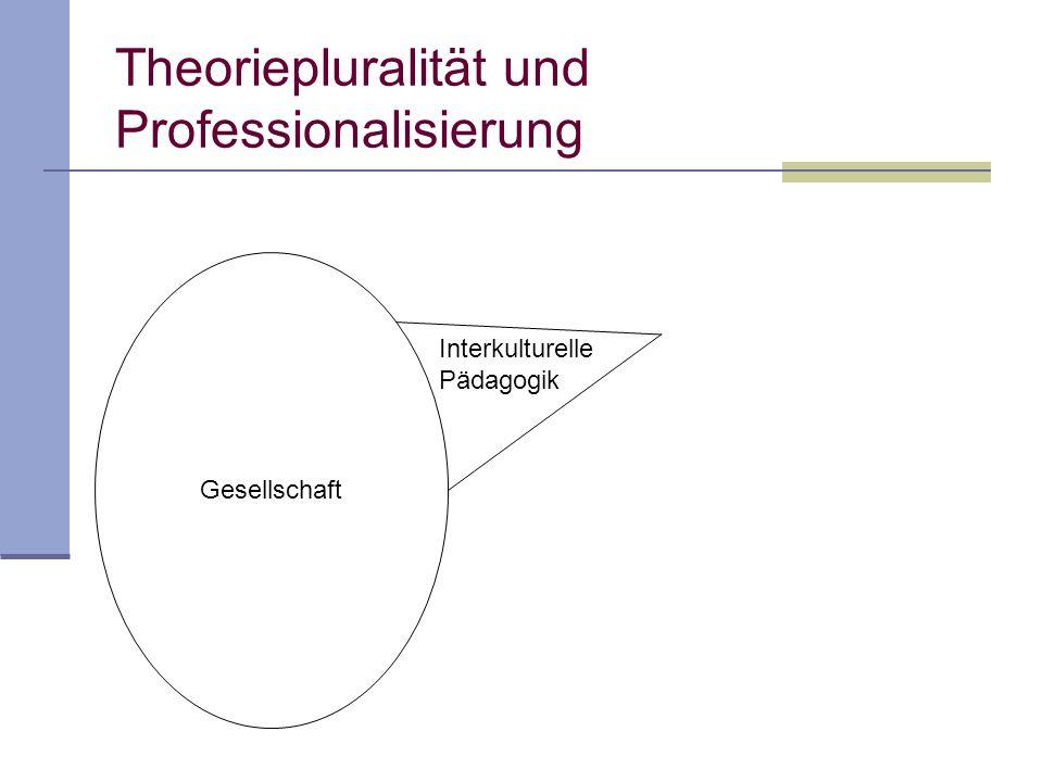 Theoriepluralität und Professionalisierung Gesellschaft Interkulturelle Pädagogik