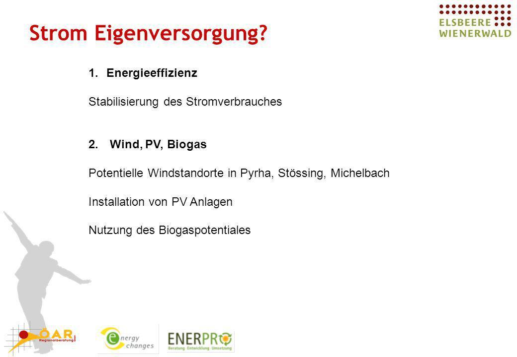 Strom Eigenversorgung? 1.Energieeffizienz Stabilisierung des Stromverbrauches 2. Wind, PV, Biogas Potentielle Windstandorte in Pyrha, Stössing, Michel