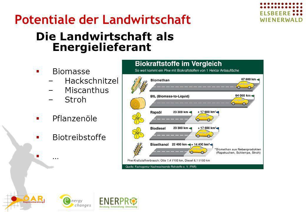 Potentiale der Landwirtschaft Die Landwirtschaft als Energielieferant Biomasse –Hackschnitzel –Miscanthus –Stroh Pflanzenöle Biotreibstoffe …