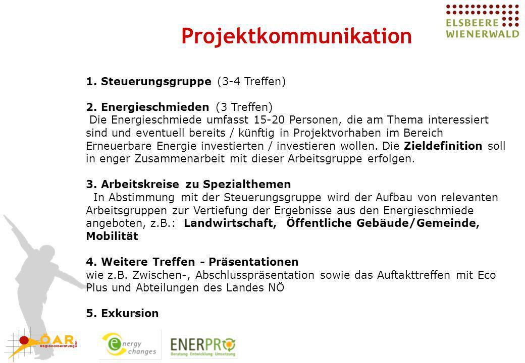 Projektkommunikation 1. Steuerungsgruppe (3-4 Treffen) 2. Energieschmieden (3 Treffen) Die Energieschmiede umfasst 15-20 Personen, die am Thema intere