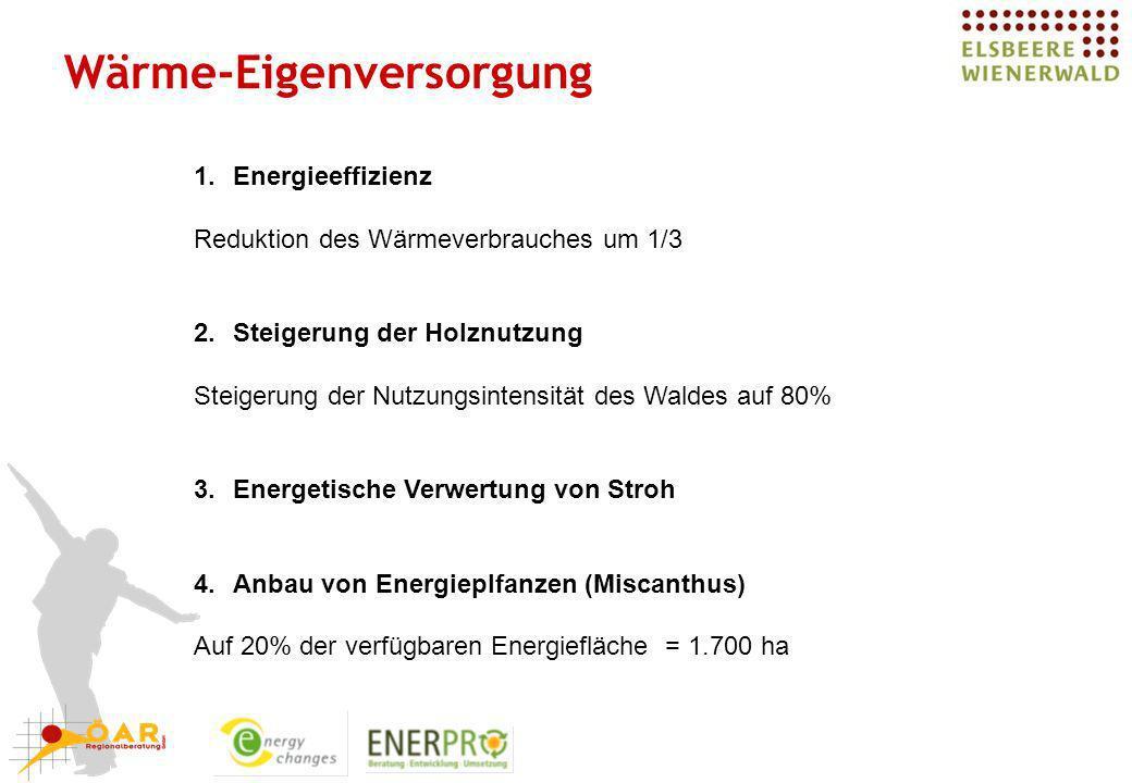 Wärme-Eigenversorgung 1.Energieeffizienz Reduktion des Wärmeverbrauches um 1/3 2.Steigerung der Holznutzung Steigerung der Nutzungsintensität des Wald