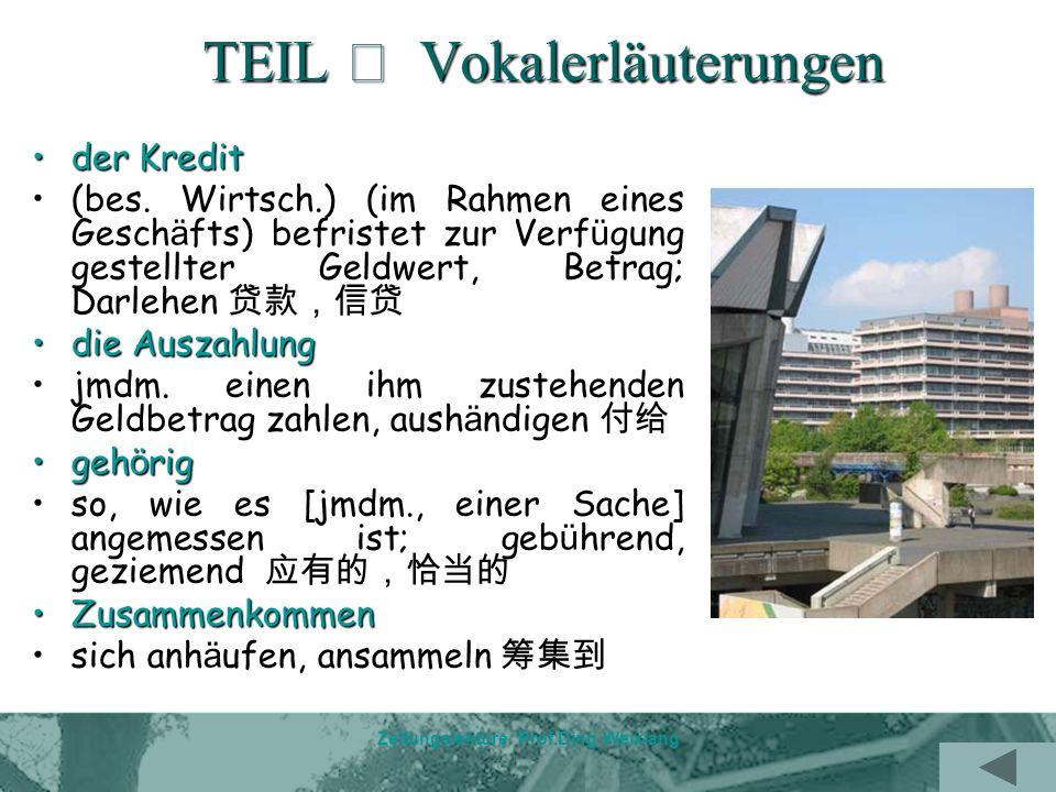 Zeitungslektüre Prof.Ding Weixiang TEIL Vokalerläuterungen der Kreditder Kredit (bes.