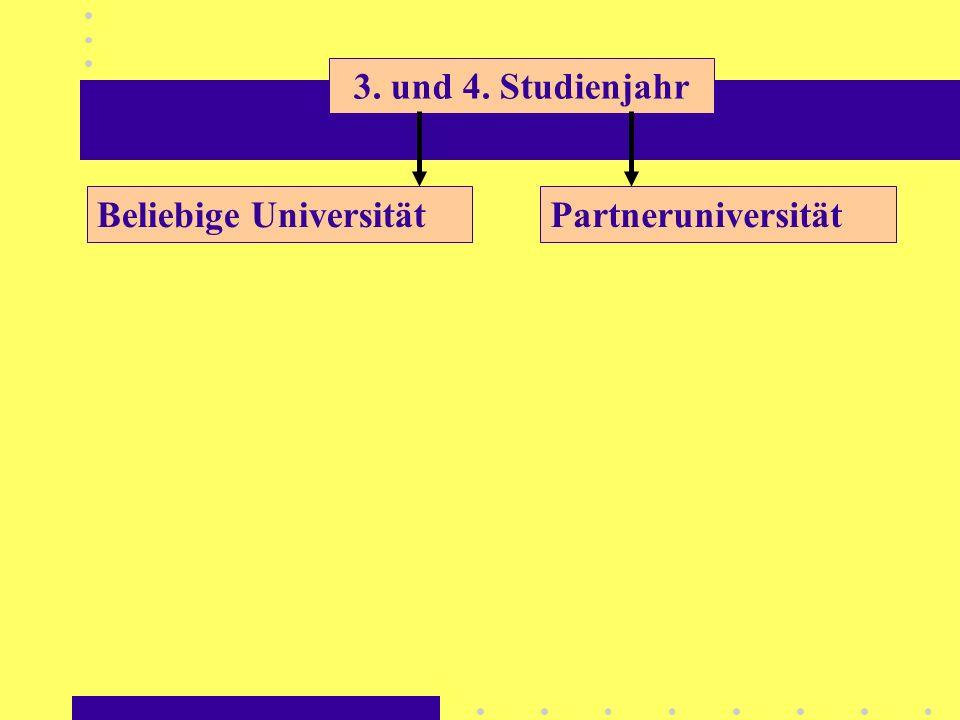 3. und 4. Studienjahr PartneruniversitätBeliebige Universität