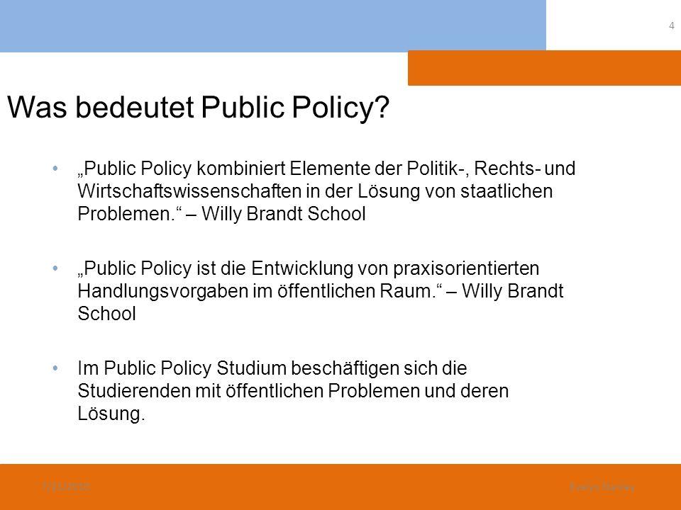 Was bedeutet Public Policy? Public Policy kombiniert Elemente der Politik-, Rechts- und Wirtschaftswissenschaften in der Lösung von staatlichen Proble