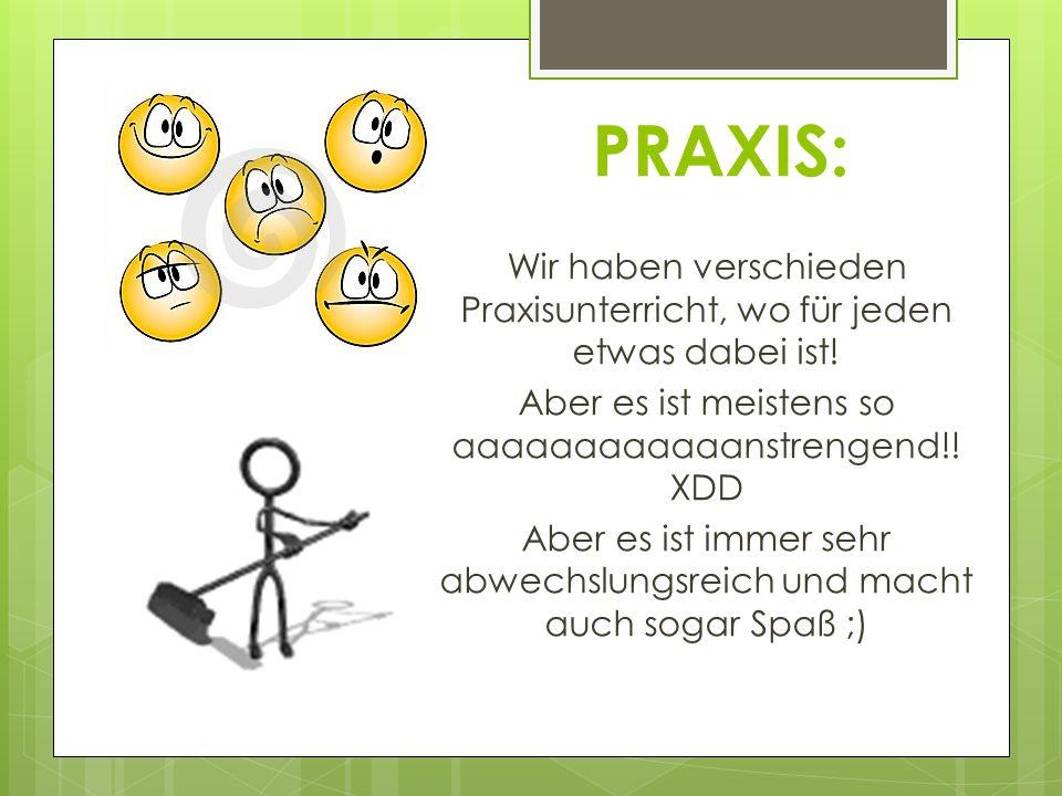 PRAXIS: Wir haben verschieden Praxisunterricht, wo für jeden etwas dabei ist! Aber es ist meistens so aaaaaaaaaaaanstrengend!! XDD Aber es ist immer s
