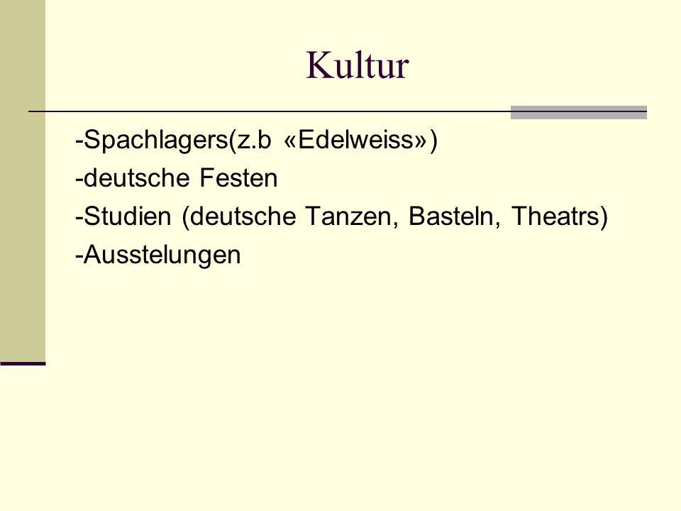 Kultur -Spachlagers(z.b «Edelweiss») -deutsche Festen -Studien (deutsche Tanzen, Basteln, Theatrs) -Ausstelungen