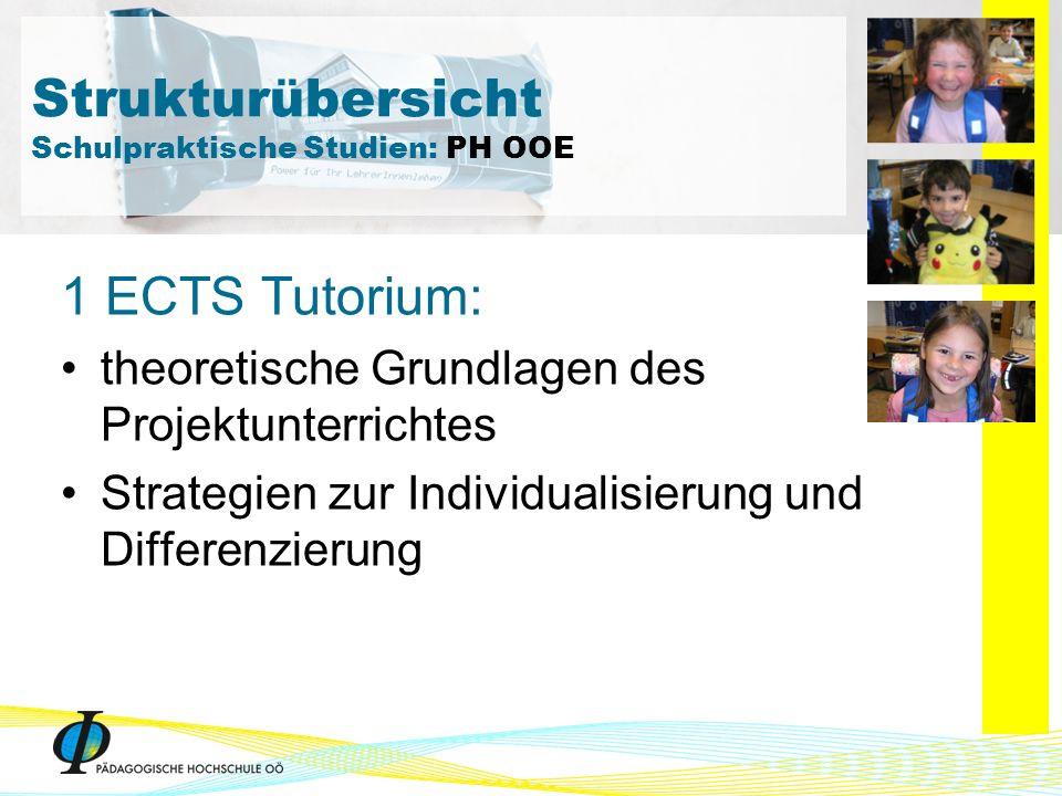 1 ECTS Tutorium: theoretische Grundlagen des Projektunterrichtes Strategien zur Individualisierung und Differenzierung Strukturübersicht Schulpraktisc