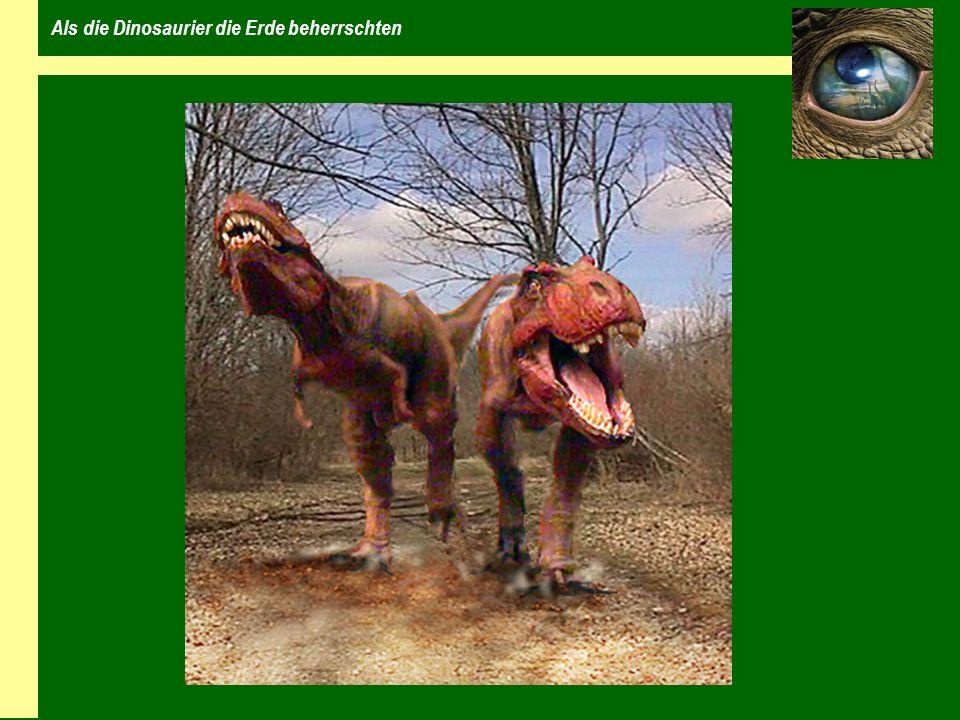 Wer waren die Dinosaurier Tierfamilie der Reptilien eierlegende Tiere erste Dinosaurier vor etwa 220 Millionen Jahren beherrschten beinahe 160 Millionen Jahre die Erde Beinstellung nicht seitlich vom Körper sondern darunter es gab keine schwimmenden oder fliegenden Dinosaurier
